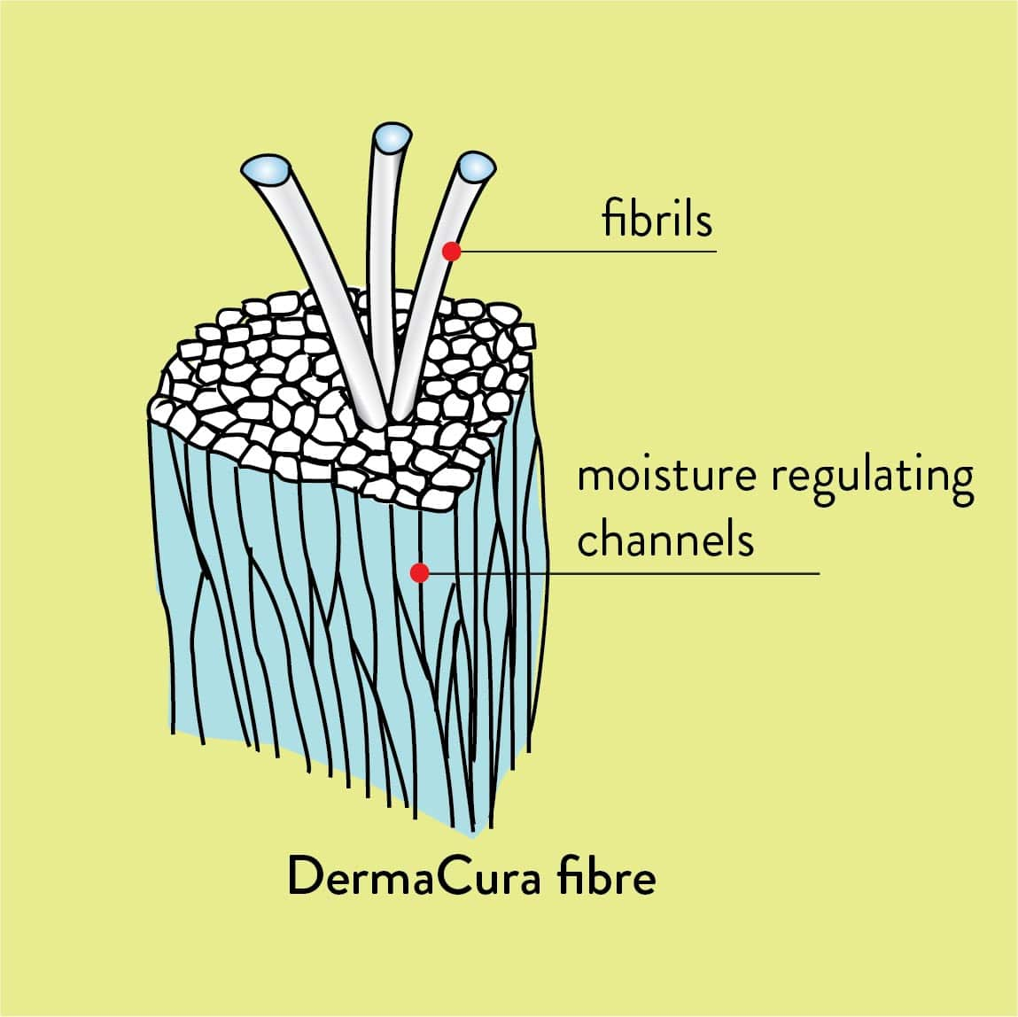 Diagram of DermaCura clothing for eczema fibres